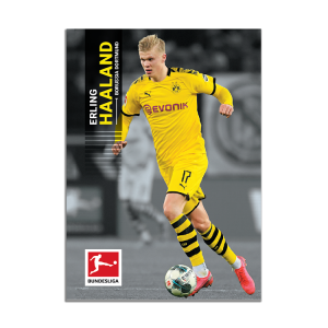TOPPS ON DEMAND BUNDESLIGA SERIE 2 CARTE HAALAND