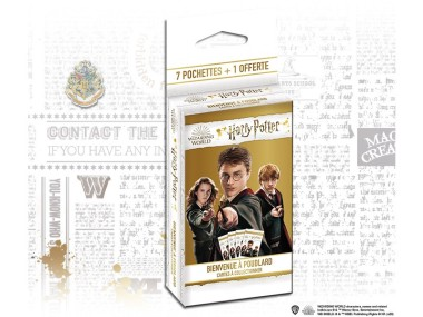 PANINI HARRY POTTER 2020 POUDLARD BLISTER 8 POCHETTES